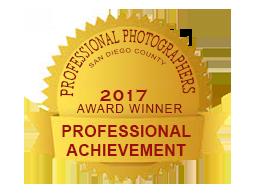 PPSDC Merit Award 2016 Violet
